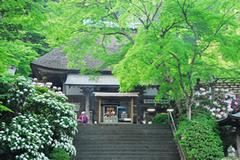 第49番 小松山 大興善寺